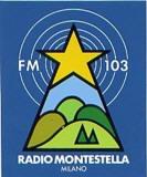 radio montestella - Storia della radiotelevisione italiana. 1976: quando Montanelli pensava (già) alle radio metropolitane di informazione