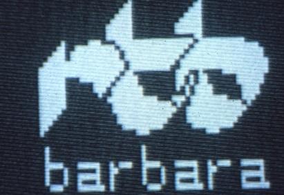 Radio Tele Barbara - Storia della radiotelevisione italiana. Friuli, RTB Radiotelevisione Barbara: superstation ante litteram