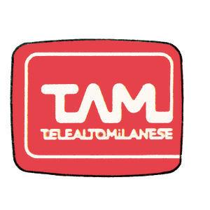 Telealtomilanese - Storia della radiotelevisione italiana. PIN: nascita e repentina morte di un cagnaccio senza denti