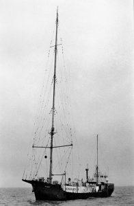 radio veronica offshore 196x300 - Storia delle radiotelevisione italia. 1968: Radio delle Rose, prima stazione offshore italiana