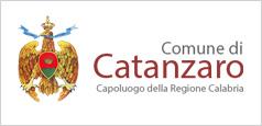 banner logo portale comune catanzaro - Professionisti, giurisprudenza. Consiglio di Stato: enti possono chiedere consulenze gratuite. E' bufera