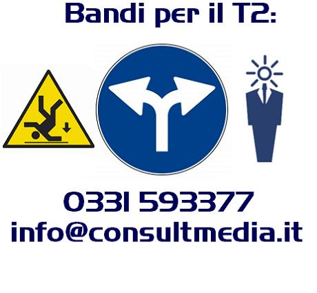 t2, consultmedia
