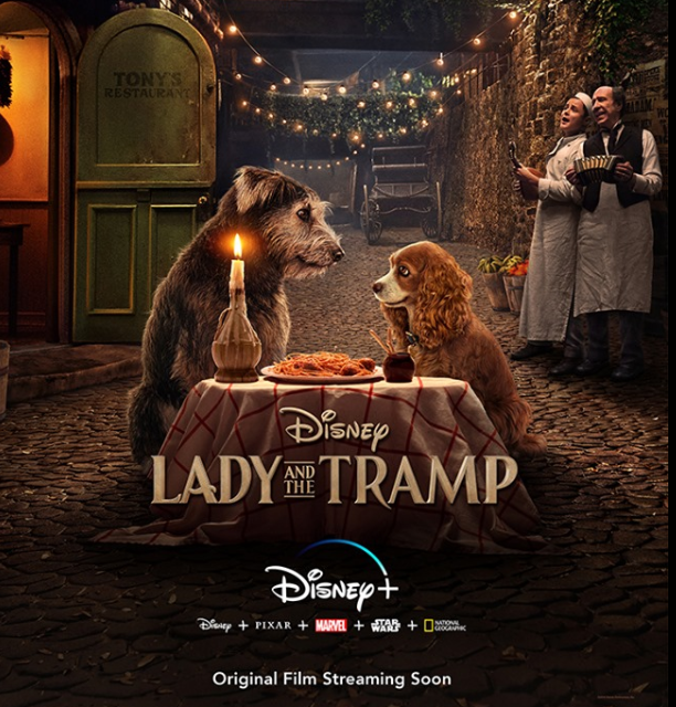Lady and the tramp Disney - IP Tv. Disney+ sbarca in USA il 12 novembre e propone un bundle con Hulu e ESPN+