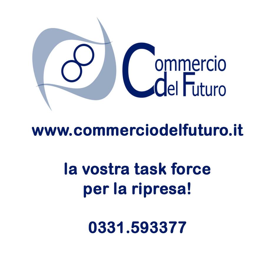 Commercio del futuro 2 - In libreria. La gestione IVA delle agenzie viaggi. G. Benedetti, R. Portale. Griuffre' Francis LeFebvre