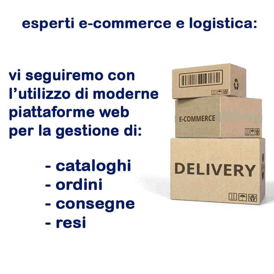 Commercio del futuro 3 - In libreria. La gestione IVA delle agenzie viaggi. G. Benedetti, R. Portale. Griuffre' Francis LeFebvre