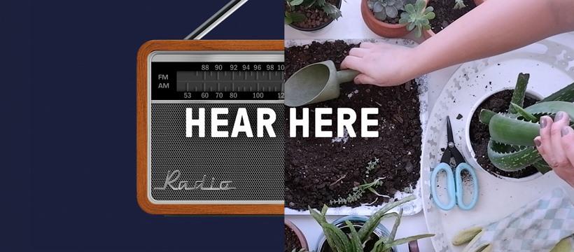 tunein hear here appello - Radio. Montefusco (RDS): naturale da Radio ad Audio. DTT interattivo. Auto: futuro è hybrid radio. Auspico laboratorio TER. Bene Sky in Radio