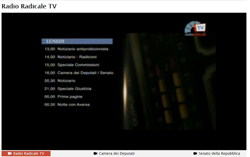rrtv - Radio. Falconio (Radio Radicale): noi servizio pubblico, RaiPlay concorrenza diretta a settore commerciale. Guardiamo al digitale ma senza pensare di abbandonare FM