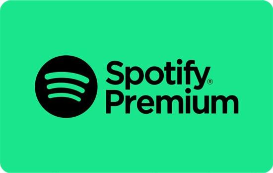Spotify italia - Audio. Spotify Italia chiude il 2020 con 11,2 milioni di euro di ricavi, ma entra nel mirino di Agenzia delle Entrate