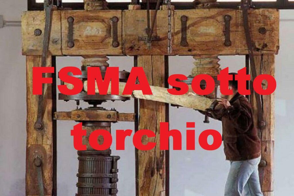 graduatoria FSMA della Lombardia